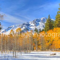 Tallac Snow Meadow