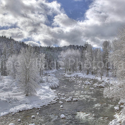 Truckee River Spring