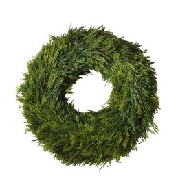 Cypress Wreath 18""