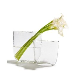 Oak + Arrow Interiors Ellipse Clear Vases - Small
