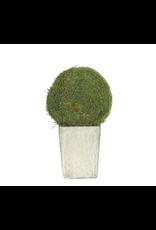 Oak + Arrow Interiors Moss Ball