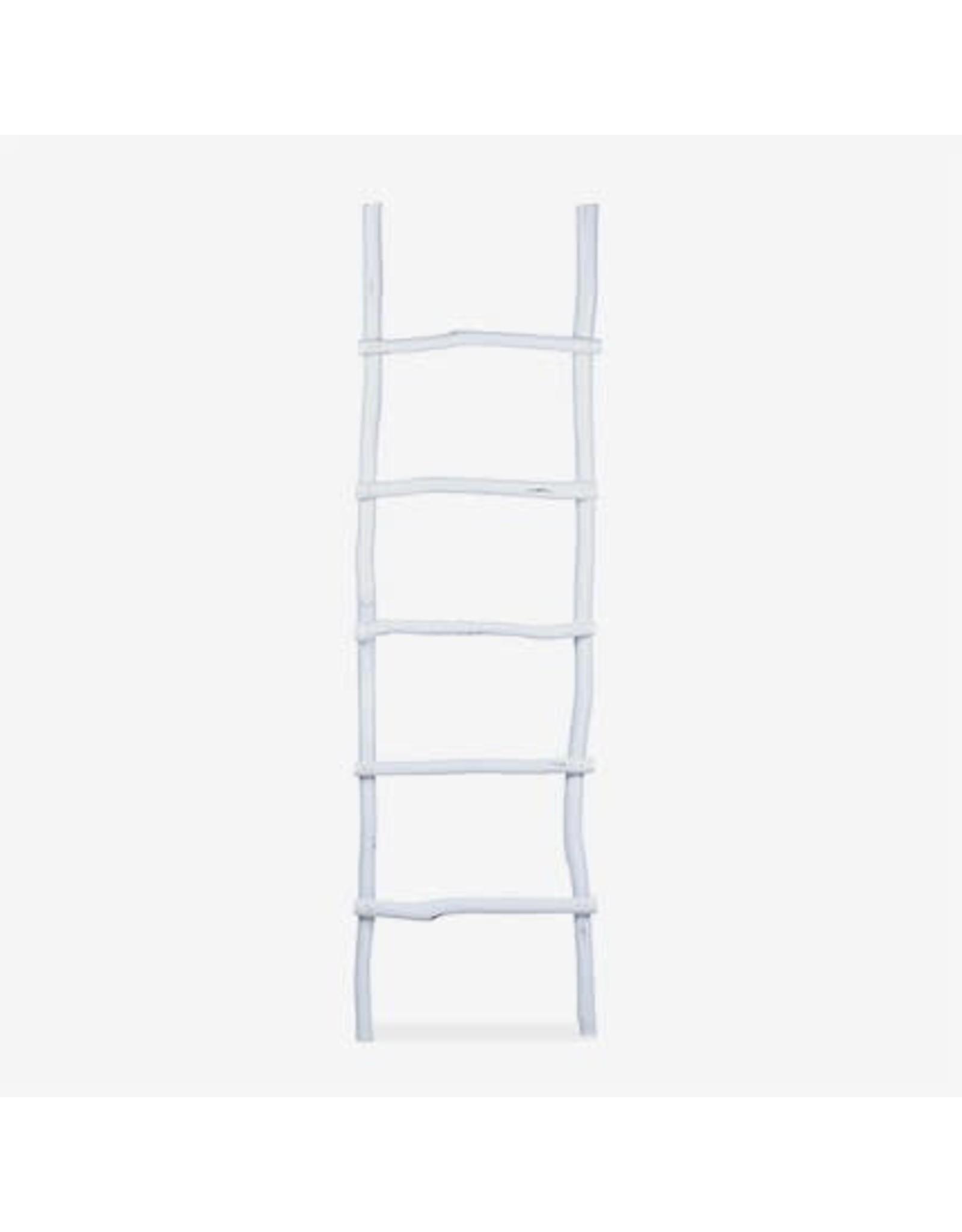 Organic Decorative Ladder - Antique White