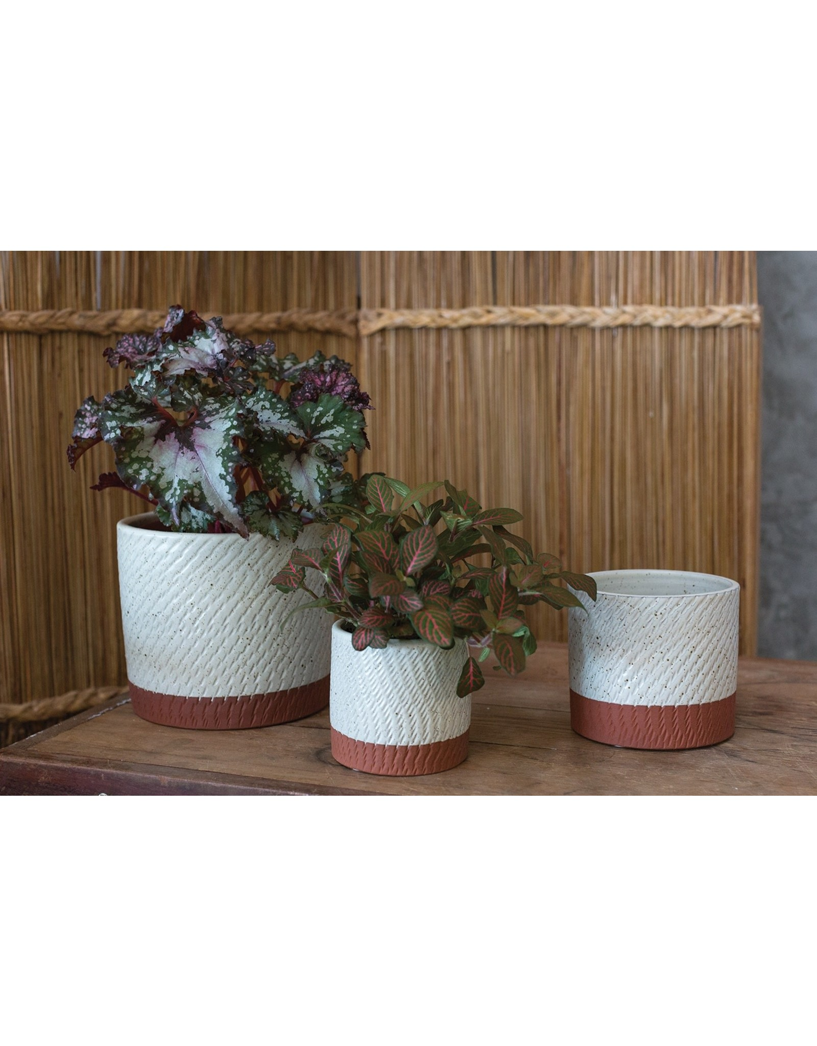 Oak + Arrow Interiors Como Pot