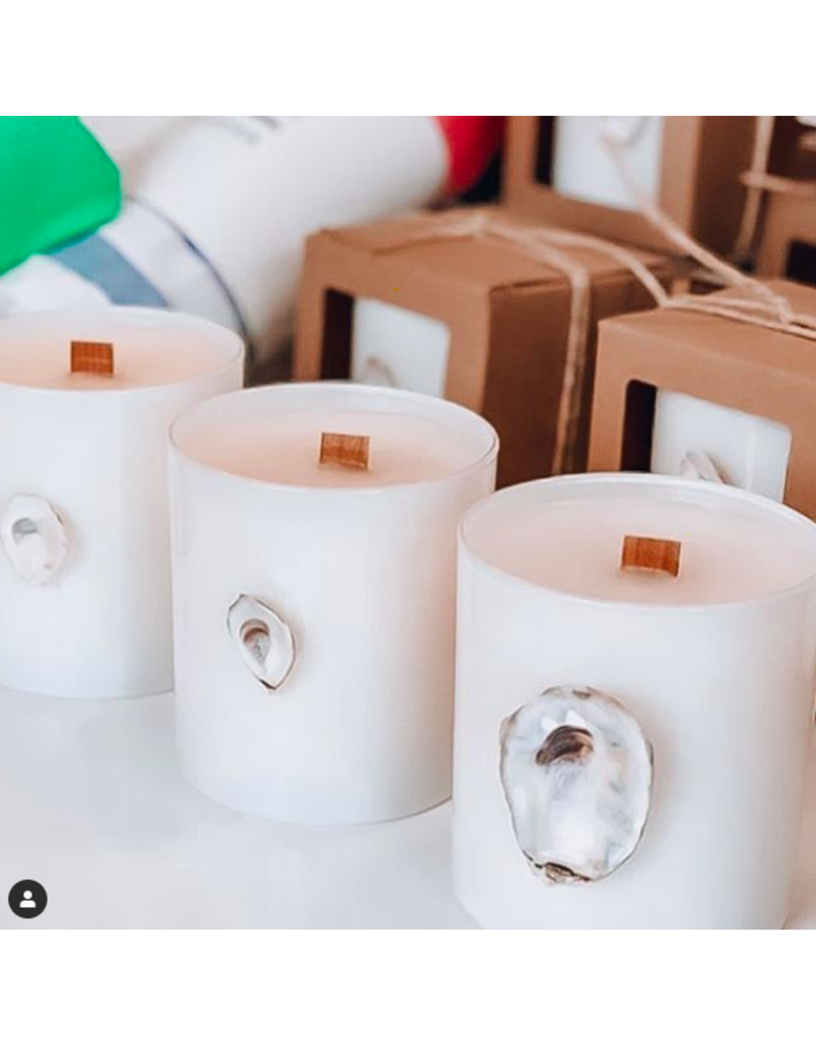 Oak + Arrow Interiors 9oz Oyster Candle - Sea Salt & Palmetto
