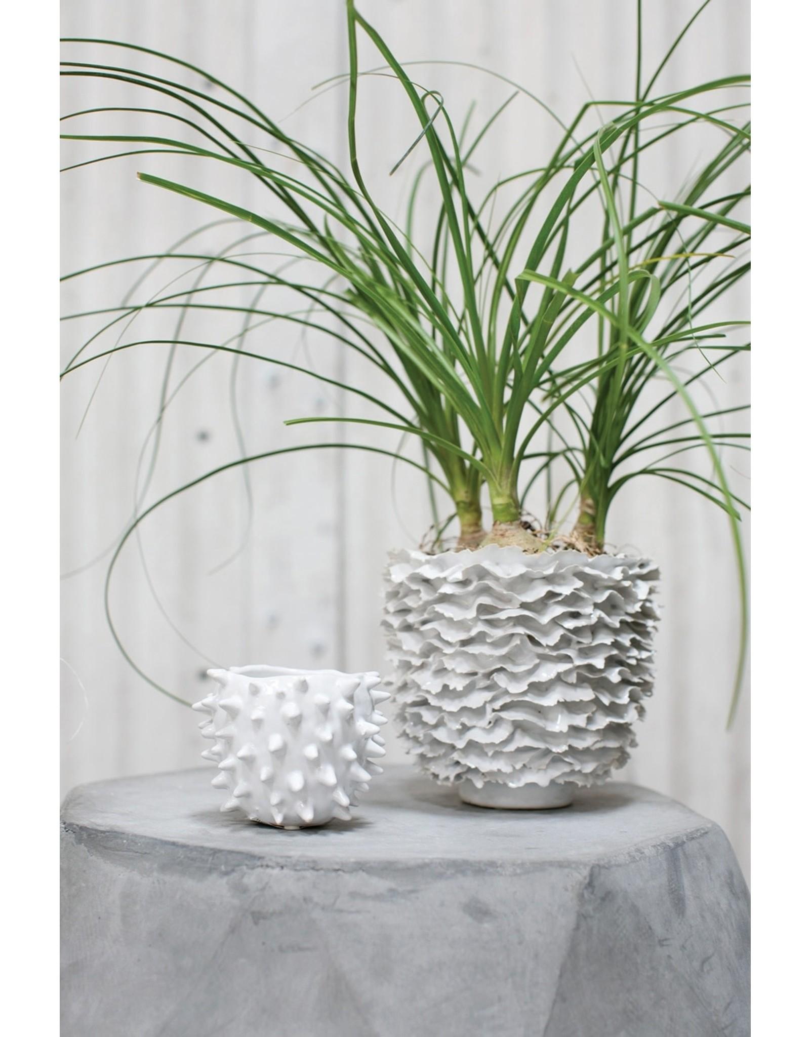 """Oak + Arrow Interiors Cacti Pot 4.25"""" x 3.25"""""""