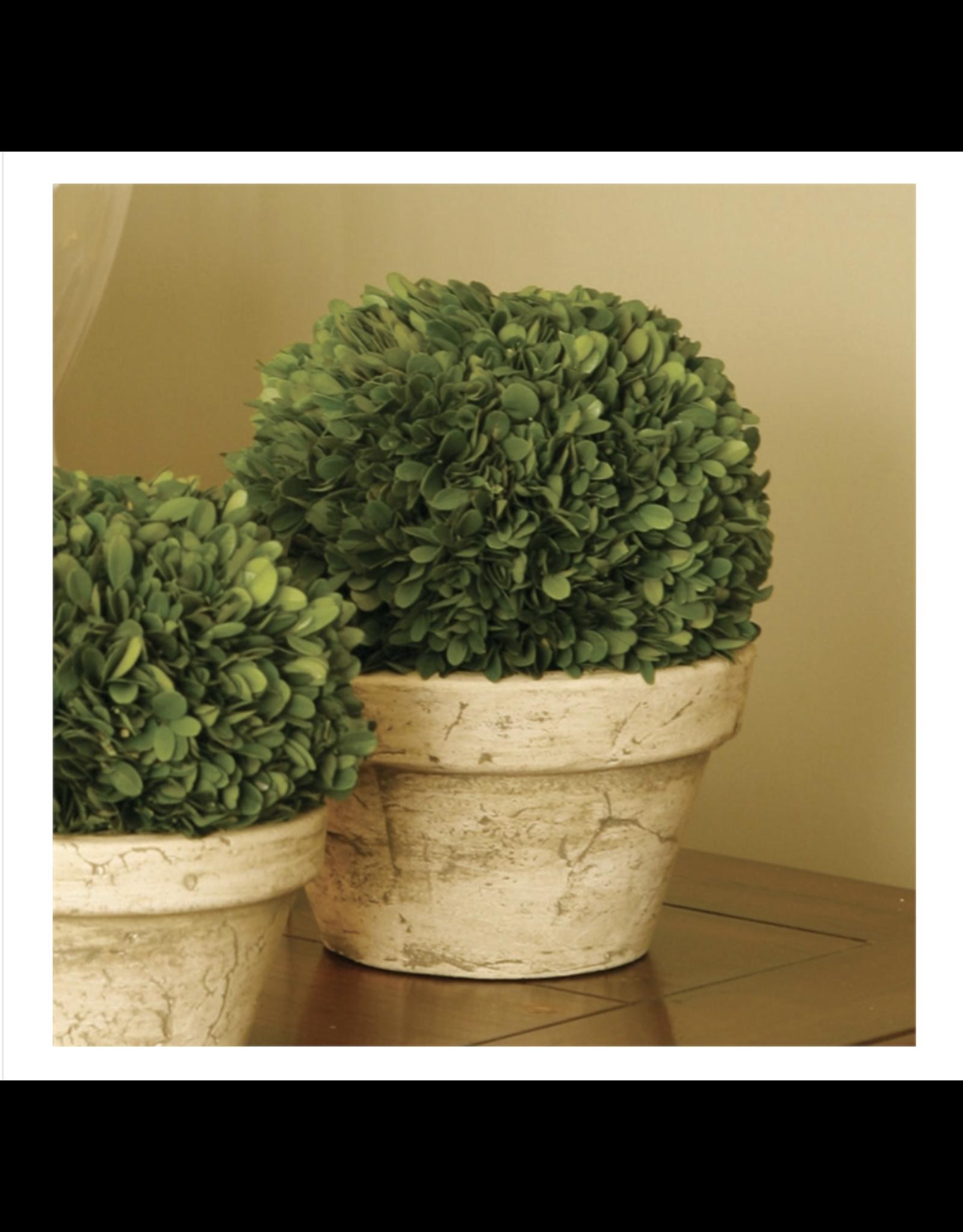 Oak + Arrow Interiors Large Boxwood Topiary