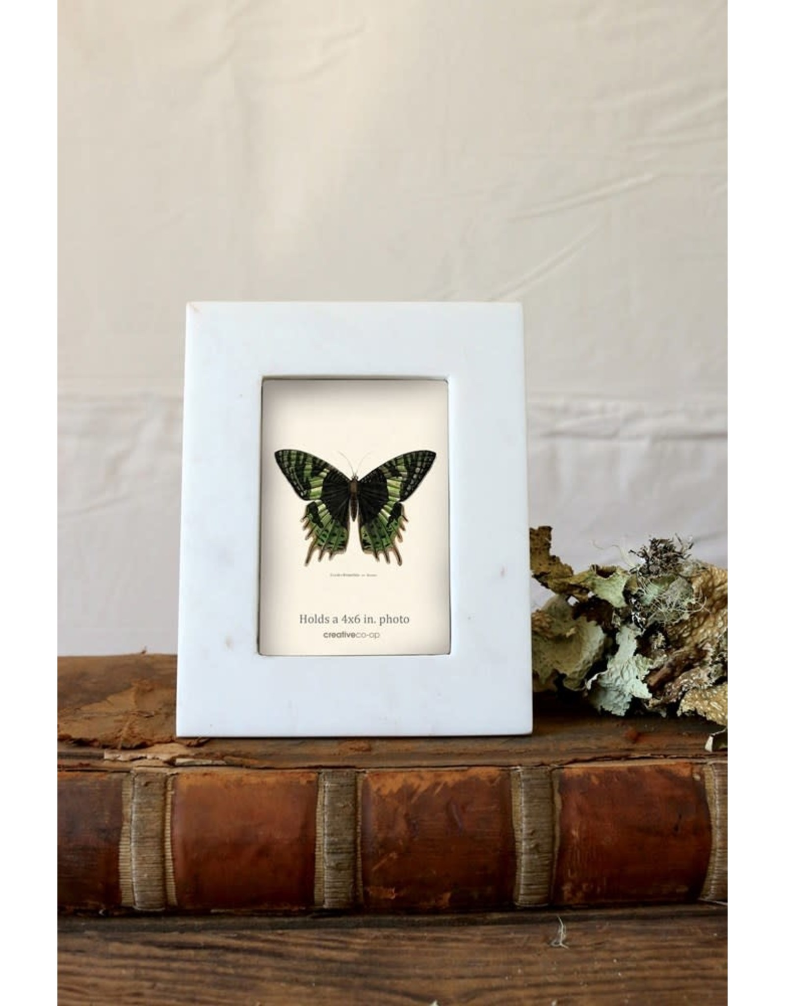 Oak + Arrow Interiors Marble Photo Frame - 4' x 6'