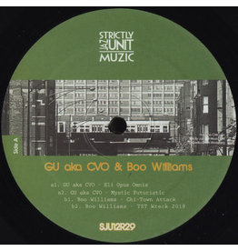 HS GU (aka CVO) & Boo Williams ‎– Project 12""