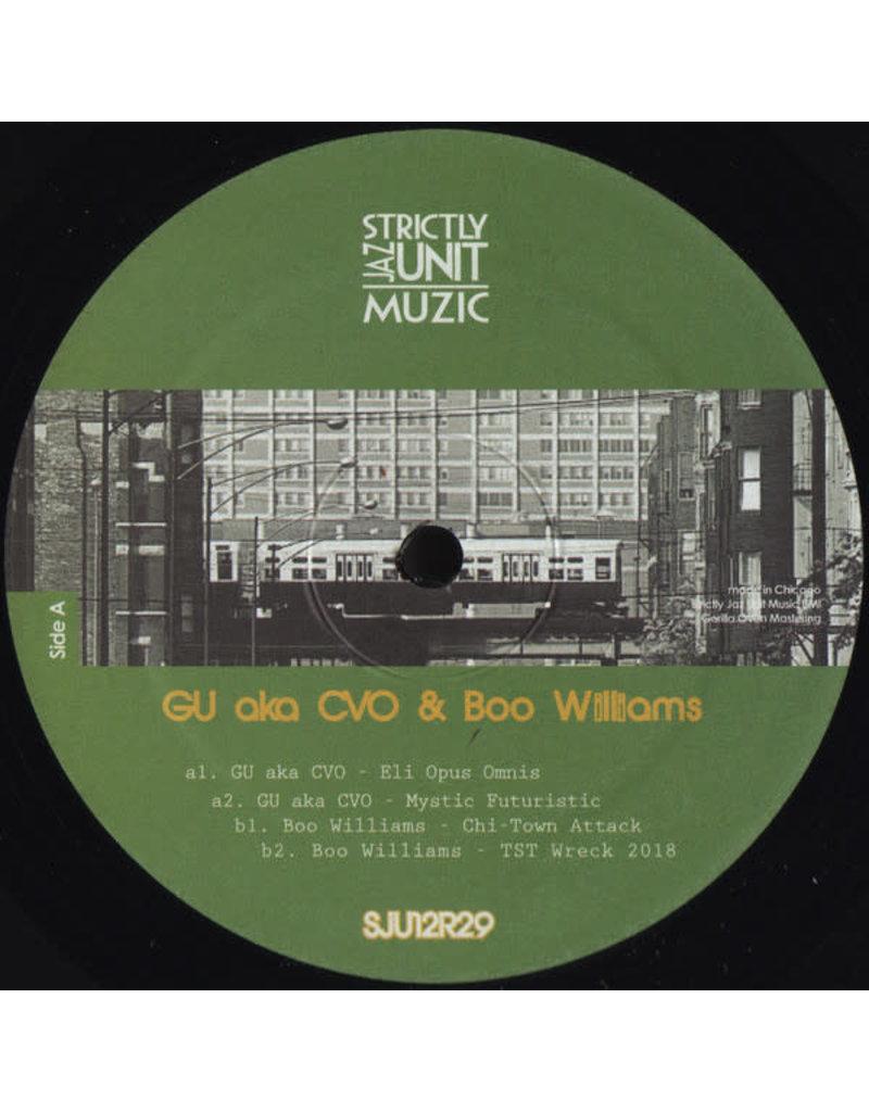 "HS GU (aka CVO) & Boo Williams – Project 12"""