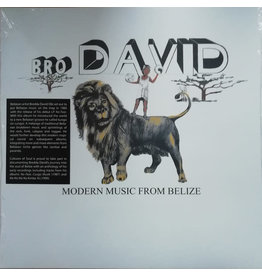 Bro David ‎– Modern Music From Belize LP