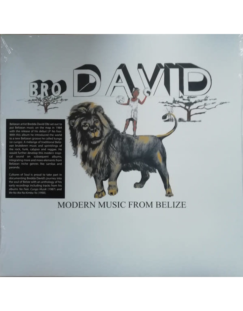 Bro David – Modern Music From Belize LP