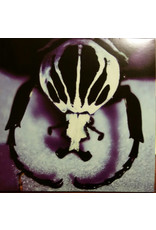 RK The Age Of Electric – Make A Pest A Pet 2LP