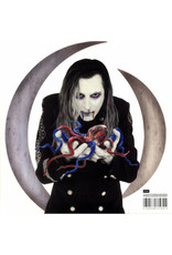 RK A Perfect Circle ‎– Eat The Elephant 2LP
