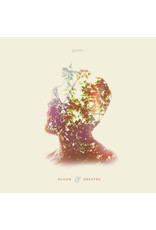 RK Gates - Bloom & Breathe 2LP (2015)