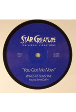 FS Wings Of Sunshine Featuring Steve Dolfin ‎– You Got Me Now / Magic Of The Funk 7""