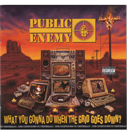 Public Enemy – What You Gonna Do When The Grid Goes Down? CD