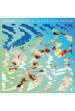 RK Abram Shook ‎– Landscape Dream LP