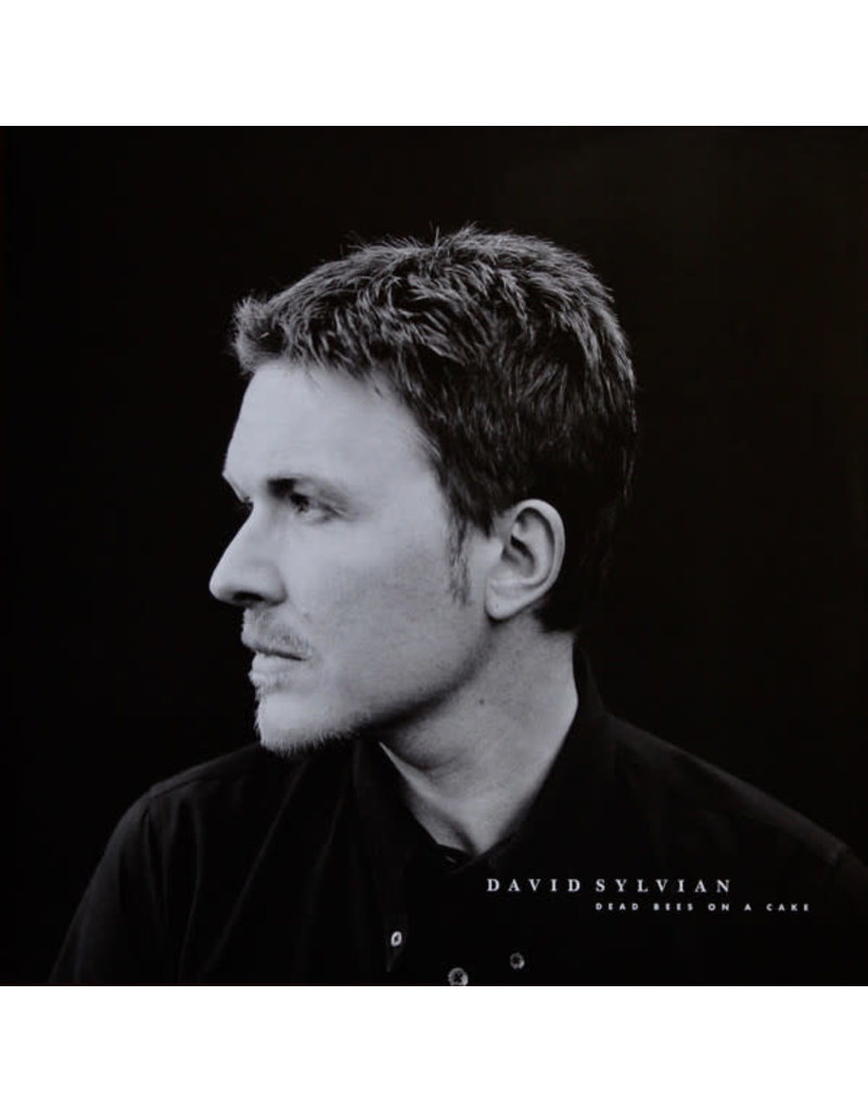 RK David Sylvian ‎– Dead Bees On A Cake 2LP