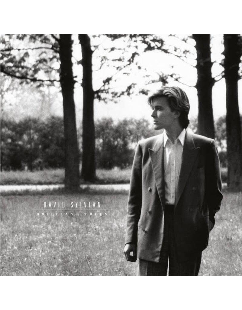 RK David Sylvian - Brilliant Trees LP (2019 Reissue), 180g, Gatefold