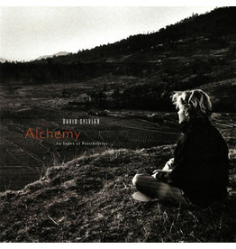 RK DAVID SYLVIAN ‎– ALCHEMY AN INDEX OF POSSIBILITIES LP