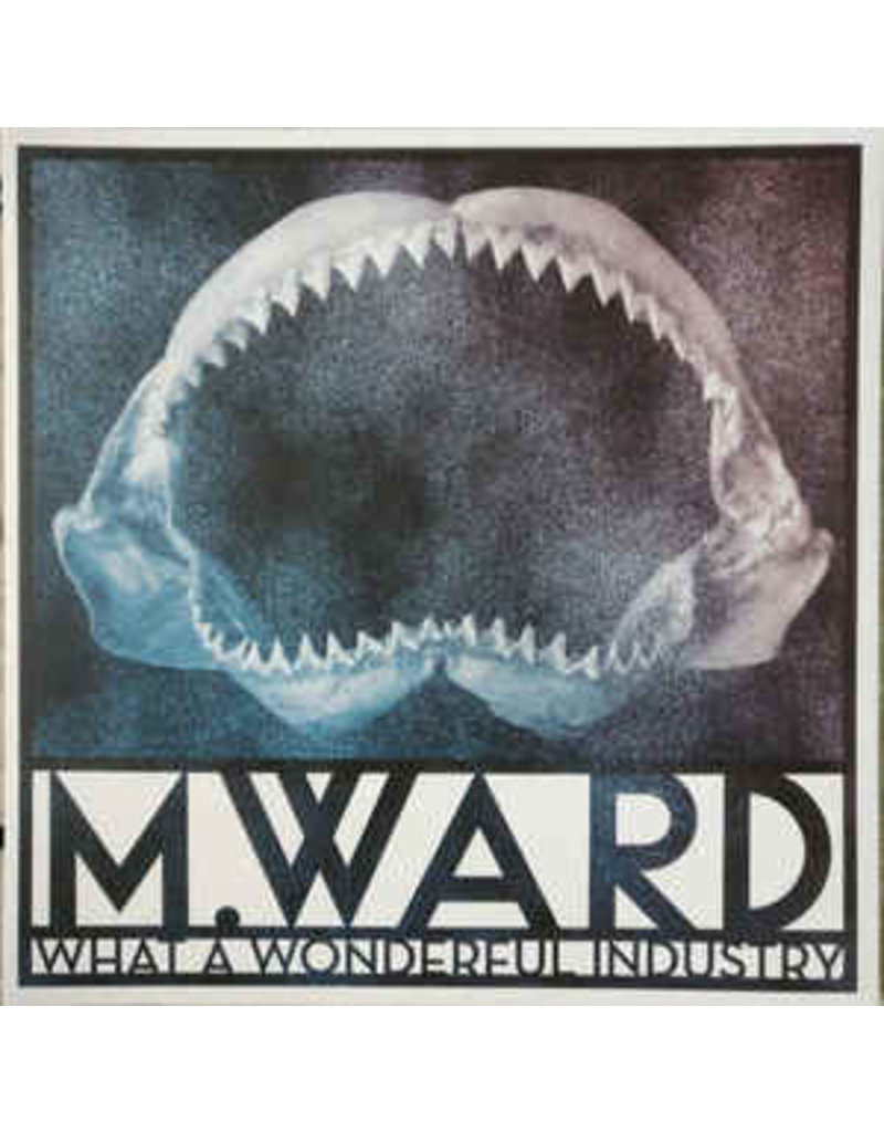 RK/IN M. Ward – What A Wonderful Industry (2018)