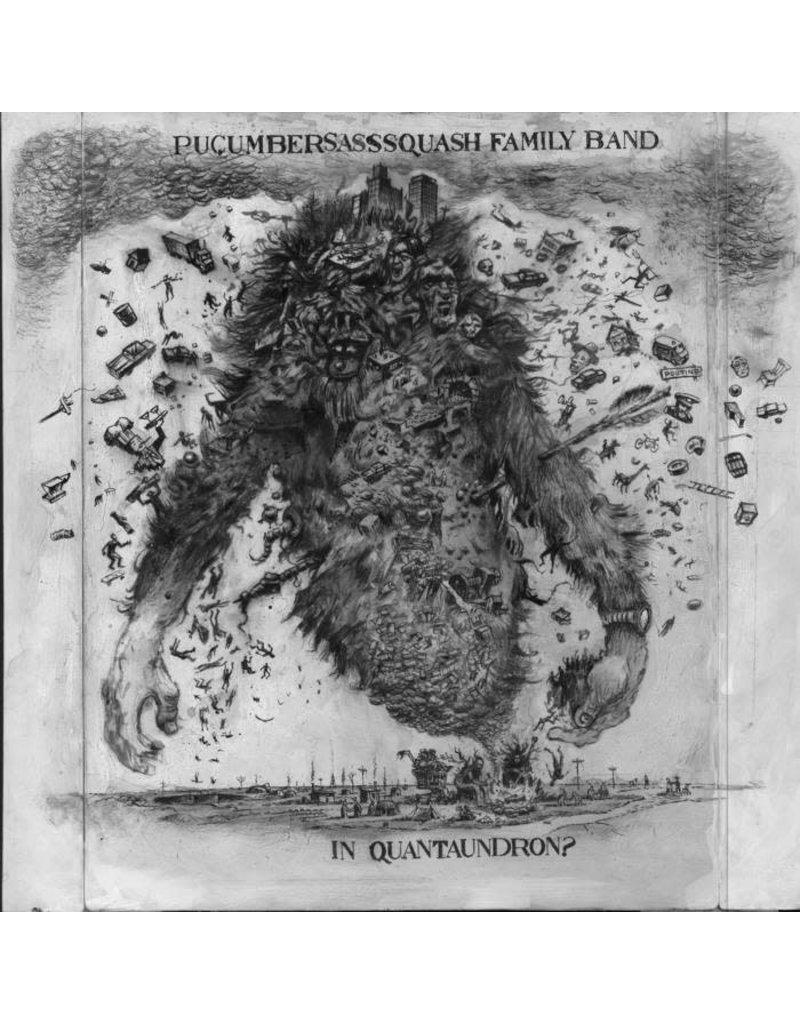 PU Pucumber Sasssquash Family Band - In Quantaundron?