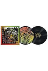 """SERATO - CONTROL VINYL """"SHERYO & THE YOK BUSHWICK - ENDLESS SUMMER"""" 2x12"""" (PICTURE DISC)"""