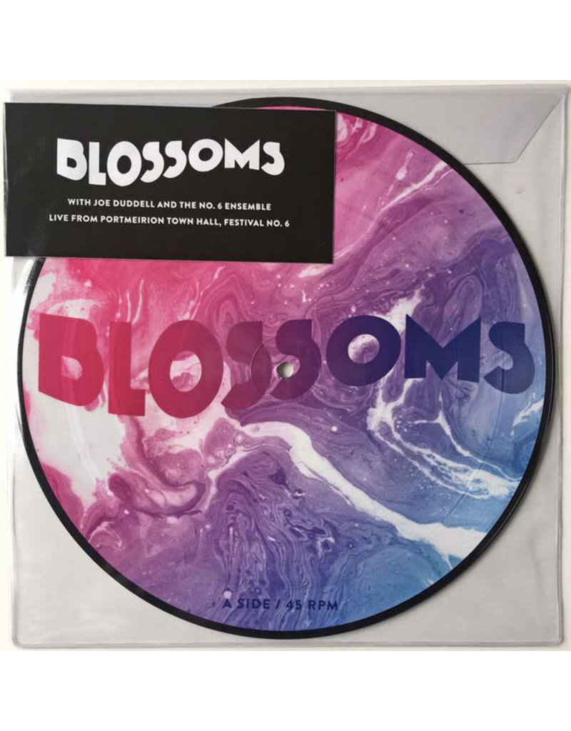 """RK Blossoms With Joe Duddell And The No. 6 Ensemble – Live From Portmeirion Town Hall, Festival No. 6 10"""" (Picture Disc) [RSD2017]"""
