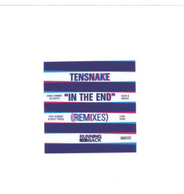 "HS Tensnake - In The End Remixes 2x12"" (2015)"