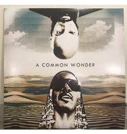 HH Amerigo Gazaway - A Common Wonder (Common Vs Stevie Wonder) 2LP (2017)
