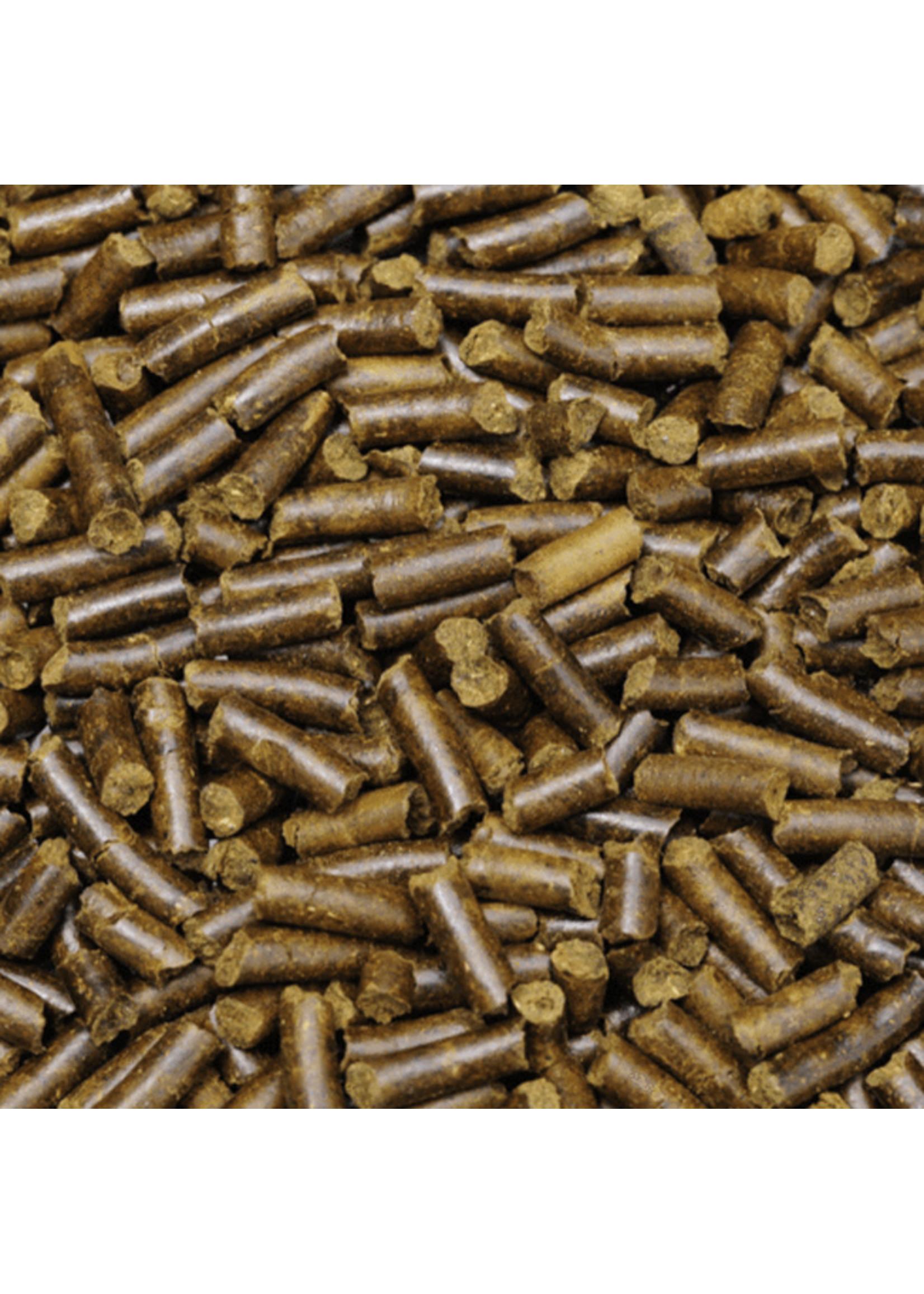 Shrimp King Shrimp King Snail Stixx 45g