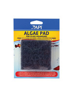 Aquarium Pharmaceuticals (API) API Algae Pad for Glass Aquariums