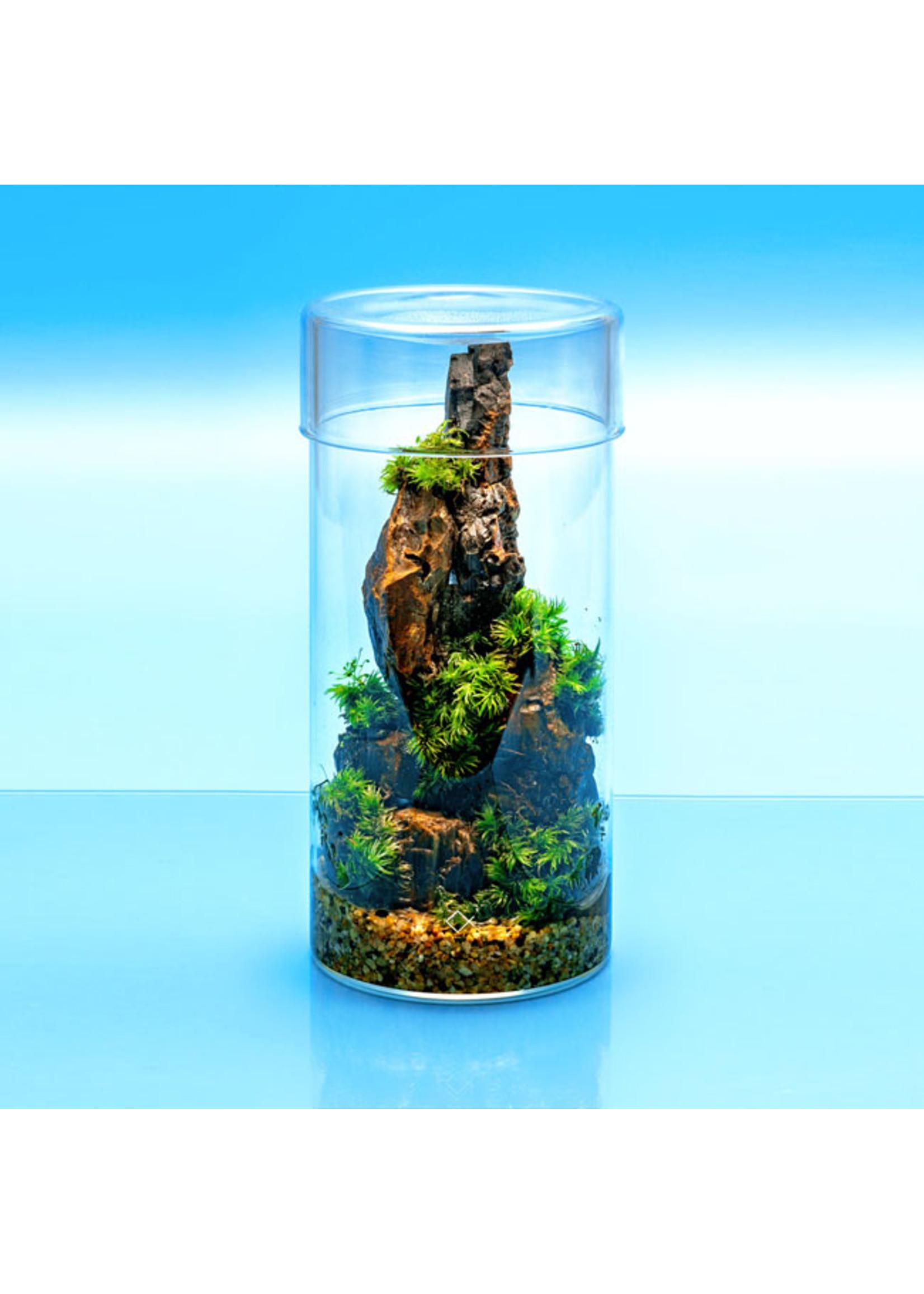 Aqua Worx Aqua Worx Cultivation Cup