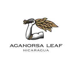 Aganorsa