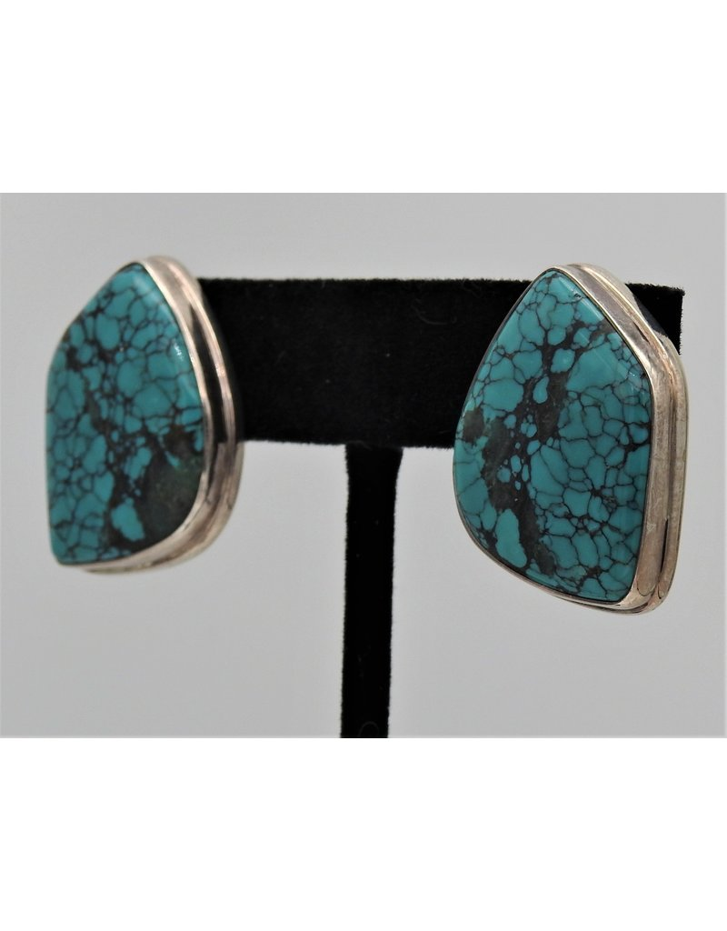 Pam Springall PS-E106C Turquoise Clips