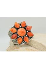 SW Native American Bracelet Spiny Oyster Multi Star Sz.5.5