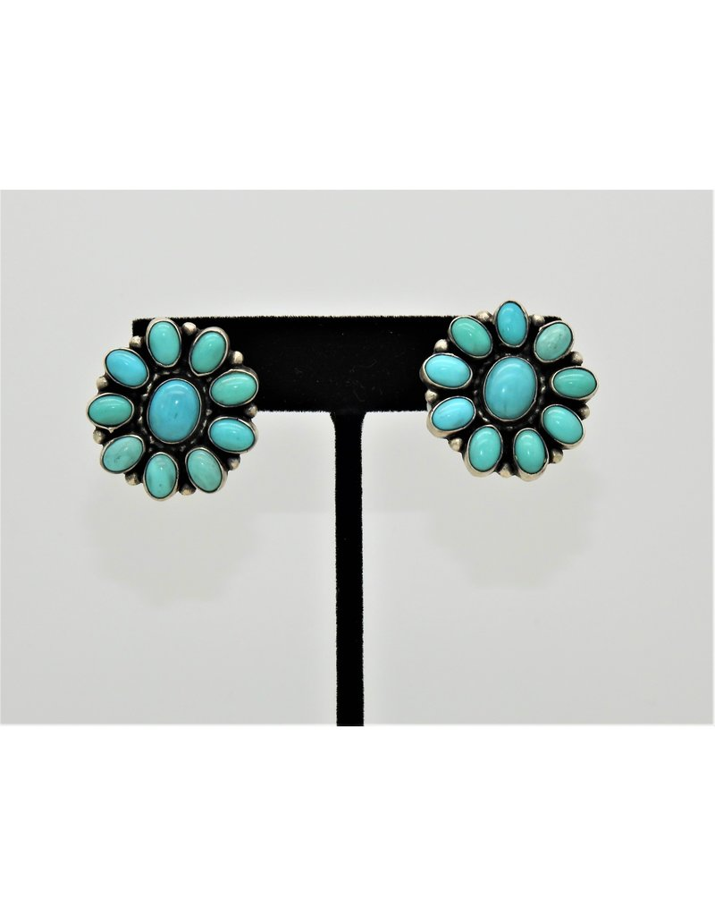 SW Native American SW-E Turquoise Clusters