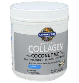 Garden of Life Coconut MCT Vanilla