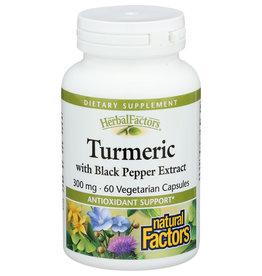 Natural Factors Turmeric W Black Pepper Ext