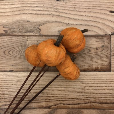 Pumpkins on Stem - Orange
