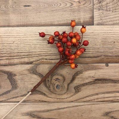 HuckleBerry Cluster Berry Pick - Orange