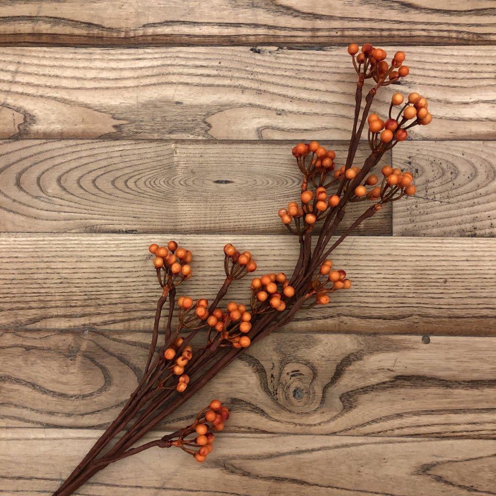 Berry Branch - Orange