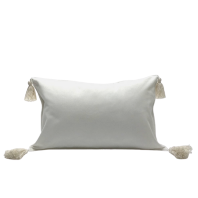 Velvet Pillow with Tassel