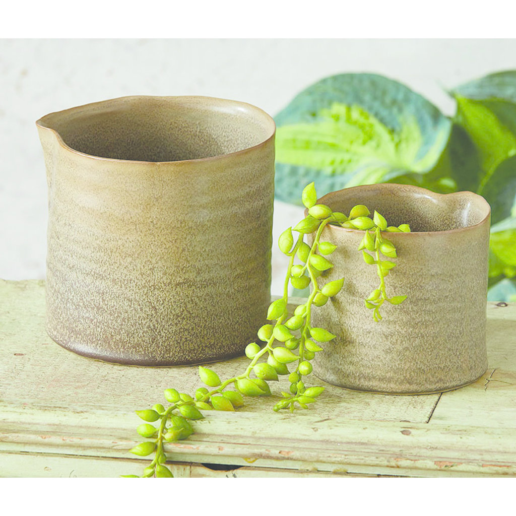 Small Organic Rim Pot