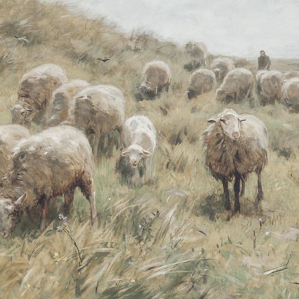 Framed Flock on Dune Print