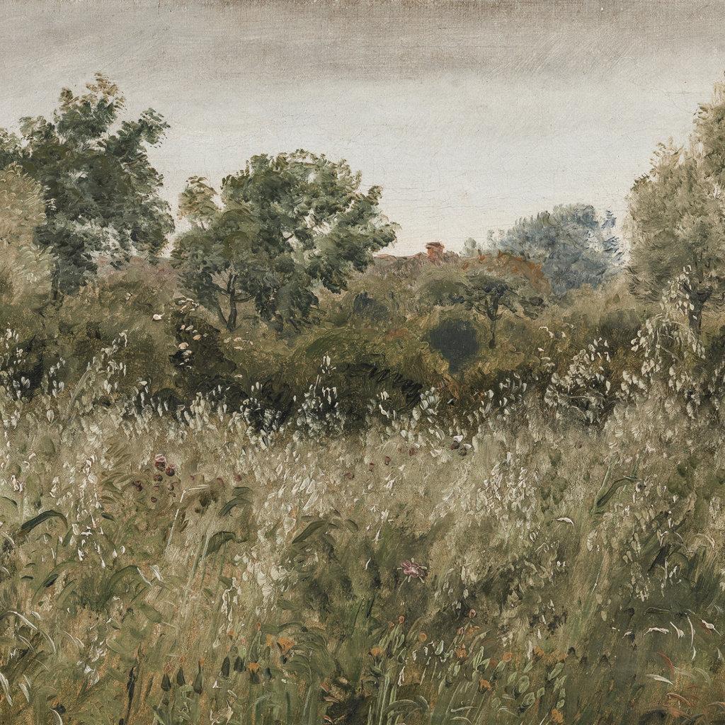 Framed Wild Meadow Print