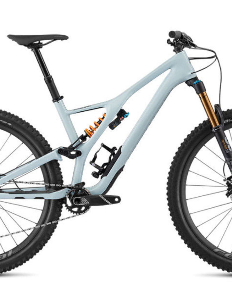 Specialized 2019 Stumpjumper Custom Carbon 29