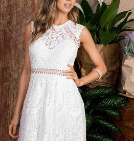 Ladies' Fashions Crochet Lace Skater Dress