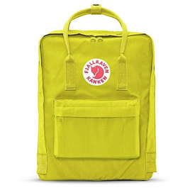 Fjallraven Arctic Fox LLC Fjallraven Kanken Classic Backpack - Birch Green