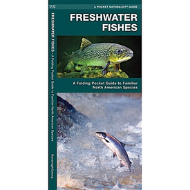 Waterford Press A Pocket Naturalist Guide - Freshwater Fishes